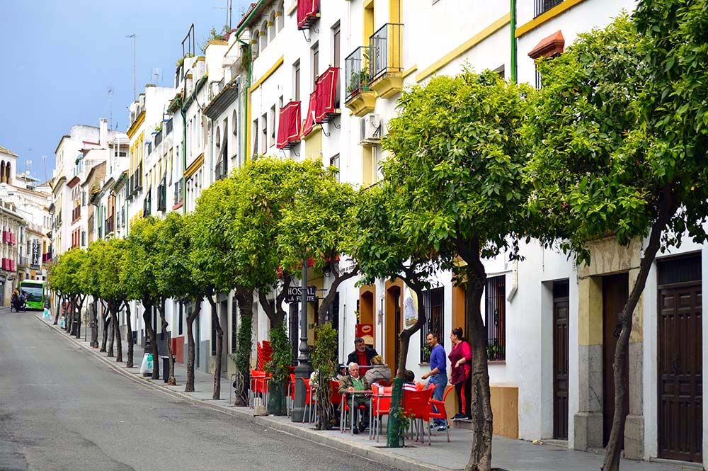 Andalucian white village with orange trees and cafes lining the sidewalk, Edible Bike Tours, ebike