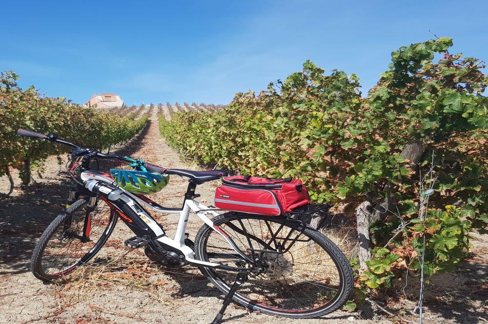 e-bike in the vineyards