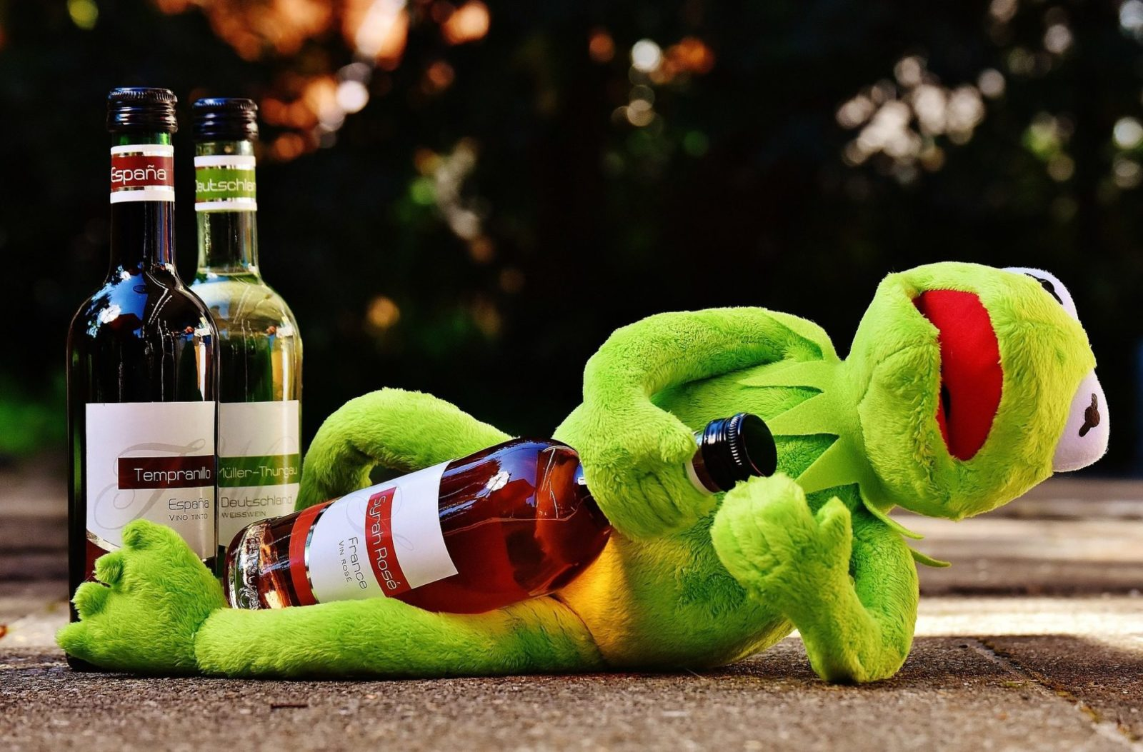 Kermit Named New Ambassador For Tempranillo Wine